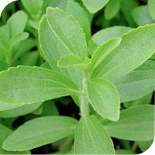 Kronuit endulzado con stevia