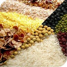 Cereales y granos NO son PALEO
