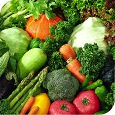 Verduras paleo