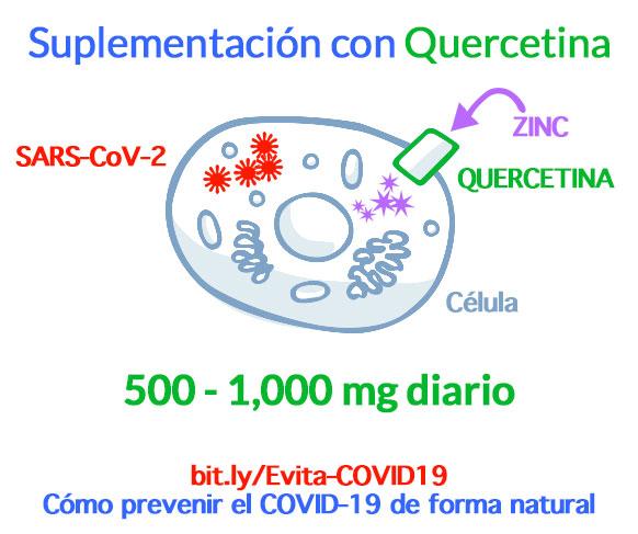 Cómo prevenir el COVID-19 con Quercetina